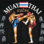 Muay Thai Martial Arts 4